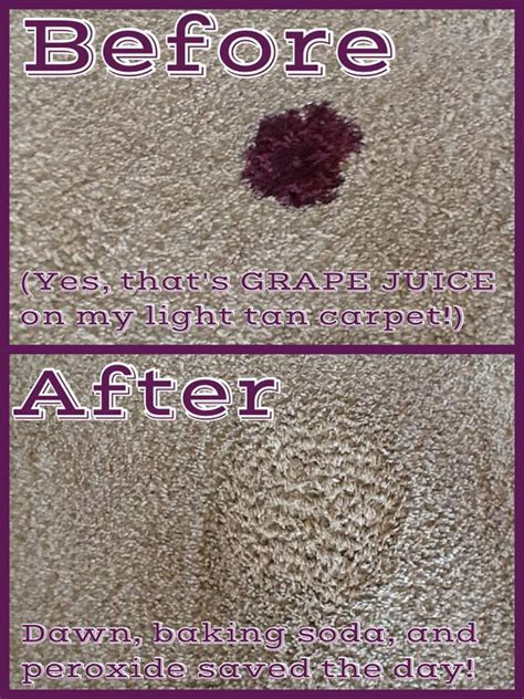 Urine Smell Removal From Carpet by How To Clean A Rug With Baking Soda Roselawnlutheran