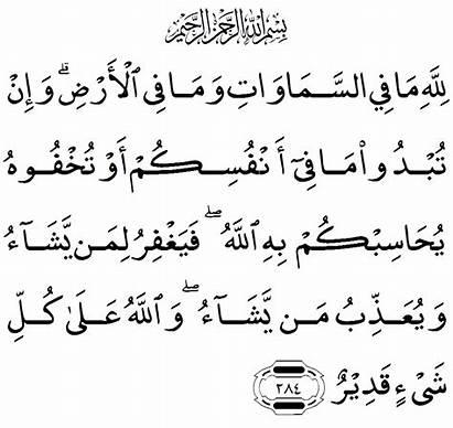 Morning Dua Arabic Azkar English Text Mishary