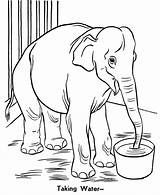 Zoo Coloring Pages Elephant Trunk Printable sketch template