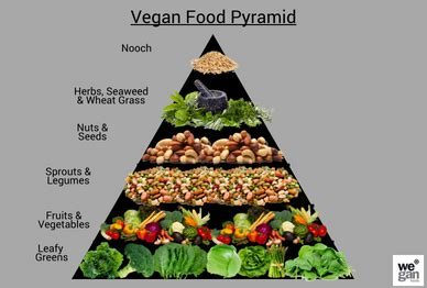 What do vegans eat- Vegan food pyramid - Wegan Foods