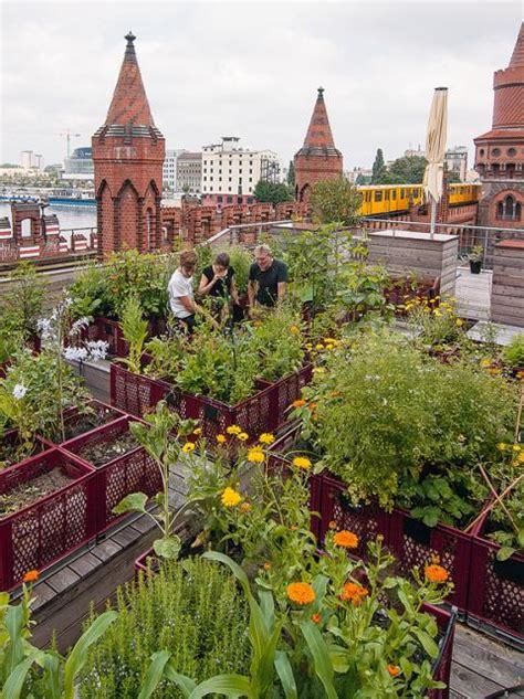 urban gardening gemeinschaftsgaerten  der stadt