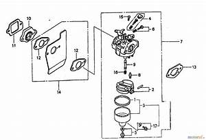 Tondeuse Honda Gcv 135 : wolf garten moteurs essence honda gcv 135 e 2098080 ~ Dailycaller-alerts.com Idées de Décoration