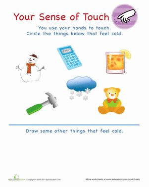 sense  touch cold worksheets preschool learning