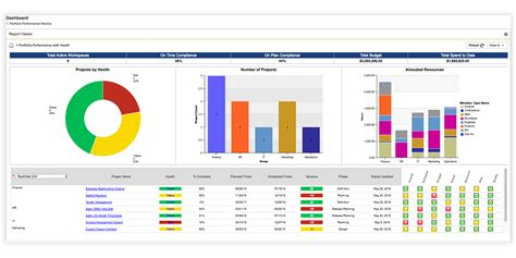 reporting capabilities  daptiv ppm changepoint