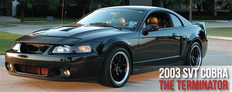 02 Mustang Cobra Specs by Ford Cobra Mustang Amazing Photo Gallery Some