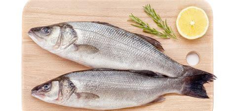 cuisiner le maigre cuisine autour d 39 un seul produit ou variété archives un