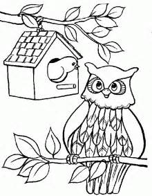 owl coloring pages coloringpagesabc