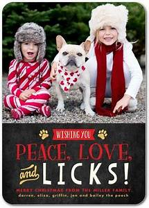 Pet Lover Holiday Cards