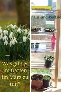 Garten Im März : was gibt es im garten im maerz zu tun haus und beet ~ Lizthompson.info Haus und Dekorationen