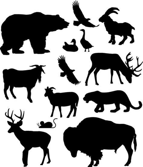 clipart  zoo animals  vector