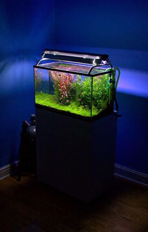 aquariums  types  aquariums