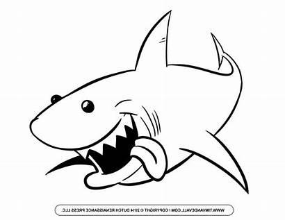 Shark Drawing Simple Clipart Sharks Basic Clipartmag