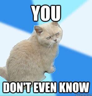 Unamused Meme - fat cat meme memes