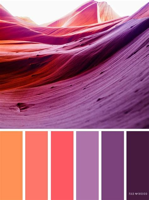 orange  purple color scheme  images purple