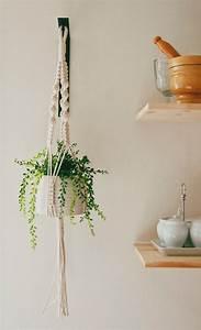Suspension Pour Plante : une cuisine verdoyante cocon de d coration le blog ~ Premium-room.com Idées de Décoration