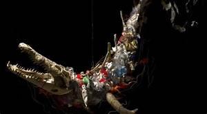 El plástico mata ecointeligencia cambia a un estilo de vida sostenible!