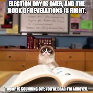grumpy cat reading - Imgflip