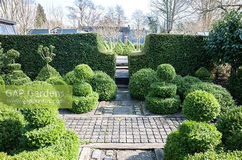 Gap Gardens  A Formal Garden Featuring Masses Of Clipped