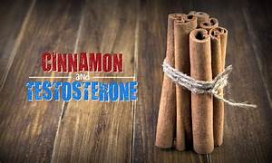 Cinnamon And Testosterone  The Cheapest T