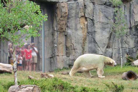 zoo houston zoos animals brookfield dallas habitat areas