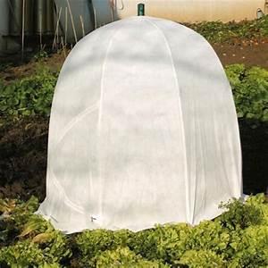 Serre Pour Plante : choisir sa serre tunnel ou serre de culture gamm vert ~ Premium-room.com Idées de Décoration