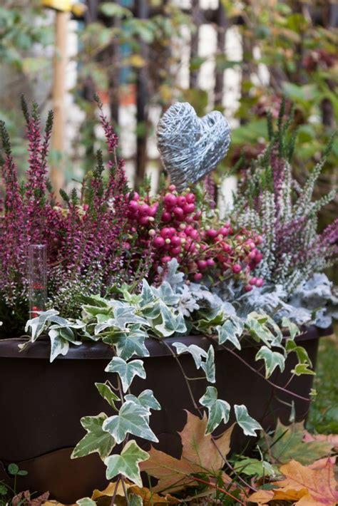 Garten Pflanzen Im Herbst by Herbst Garten Pflanzen Wohn Design