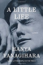 Image result for a little life book