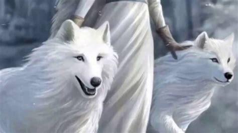 dark wolves  light wolves youtube