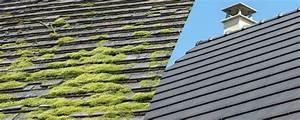 Demoussage Toiture Ardoise : prix demoussage toiture tarifs pour la r alisation d 39 un ~ Premium-room.com Idées de Décoration