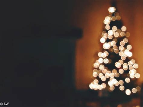 how to do christmas lights on trees how to photograph christmas light bokeh with your iphone