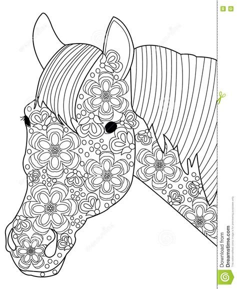 head horse coloring vector  adults stock vector