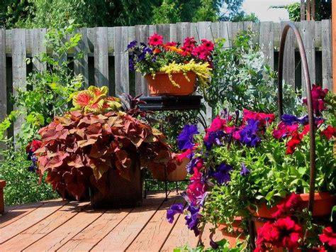 Patio Gardening 101 A Beginner's Guide To Patio Gardens