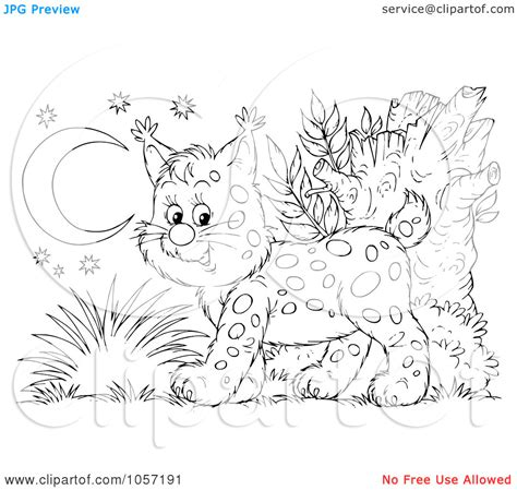 bobcat coloring pages    print