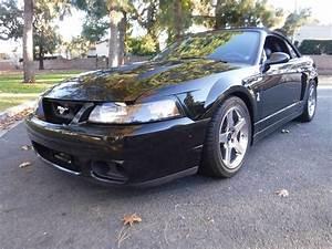 2004 Ford Mustang SVT Cobra for Sale | ClassicCars.com | CC-1161947