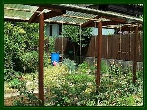 Tomatenhaus Holz Bausatz : kraut r ben forum tomatenhaus ~ Whattoseeinmadrid.com Haus und Dekorationen