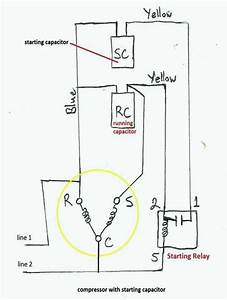 True Refrigerator Compressor Wiring Diagram