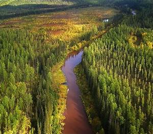 Life In The Taiga : 9 best images about taiga on pinterest official trailer hunters and movies ~ Frokenaadalensverden.com Haus und Dekorationen