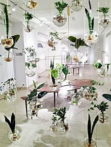 Plante Verte D Appartement : le potager d 39 int rieur en 50 belles id es ~ Premium-room.com Idées de Décoration