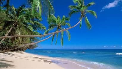 Fiji Beaches Wallpaperup Nature