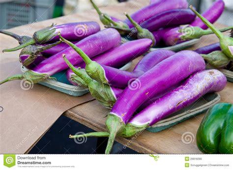 mur cuisine aubergine aubergine japonaise photo stock image 26816090