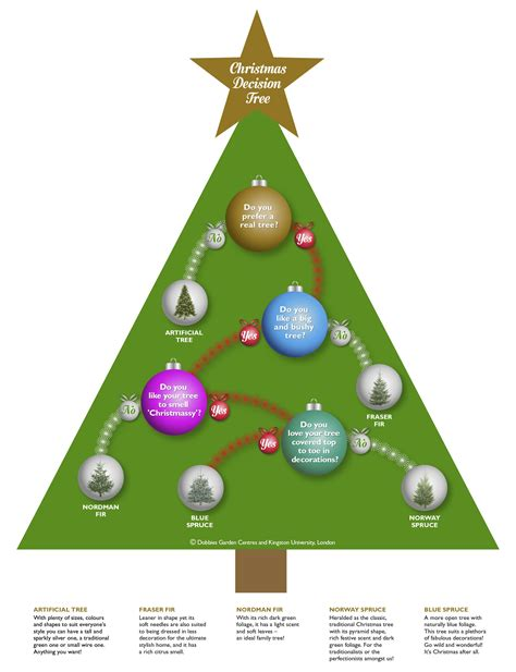 christmas tree math mathematics expert devises festive formula to find the