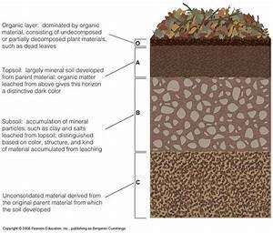 27 Best Images About Soil Horizons On Pinterest