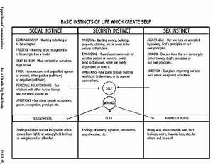 12 Step Worksheets