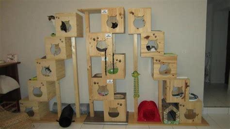 plan de travail pas cher pour cuisine arbres à chats pas de problème galore le