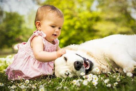 tiernas imagenes de bebes  ninos bonitos  perros