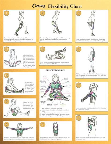 Of course, as i said. Stretching - 8 Great Exercise Posters to Buy Online - 7 Standards of Stretching and Quiz and More