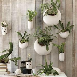 Pflanzen An Der Wand : den garten versch nern hier sind 48 ideen ~ Articles-book.com Haus und Dekorationen