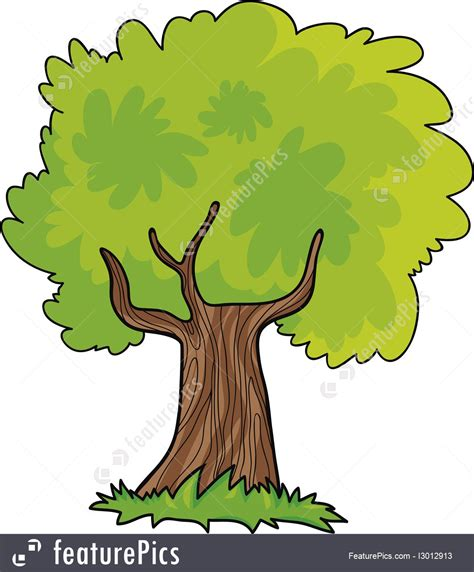 Images Of Tree Of Illustration Of Tree