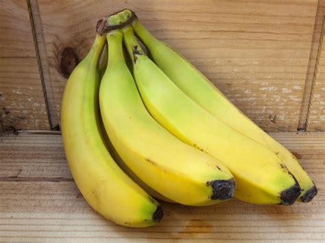 potassium potassium levels andrew weil md