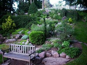 plante de rocaille liste ooreka With modeles de rocailles jardin 5 plante de rocaille liste ooreka
